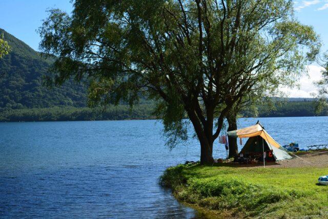 西湖自由キャンプ場の綺麗な画像