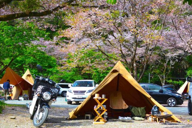 青野原オートキャンプ場でソロキャンプ