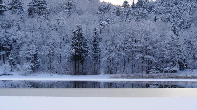四尾連湖キャンプ場四季折々