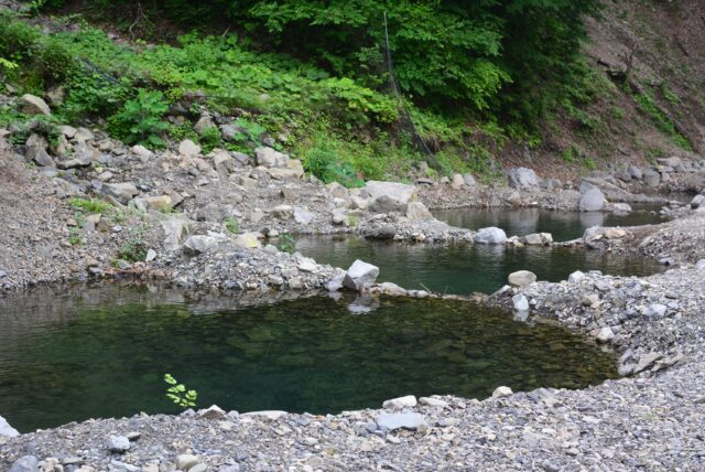 玉川キャンプ村で釣り
