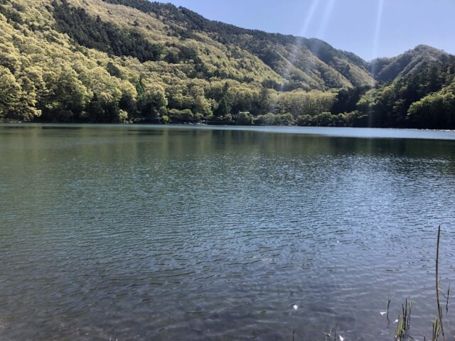 四尾連湖キャンプ場で遊泳